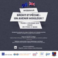 [WEBINAIRE] Brexit et pêche : un avenir houleux ?